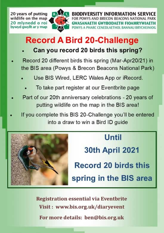 Record A Bird - A BIS 20 Challenge for March & April
